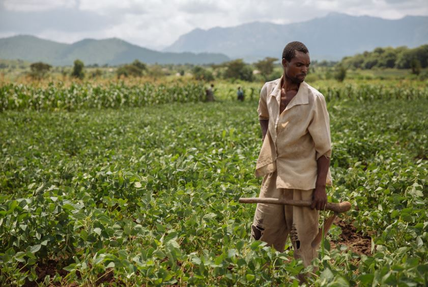 Colonial-era water laws shortchange African smallholders